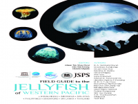 Field Guide to the Jellyfish of Western Pacific